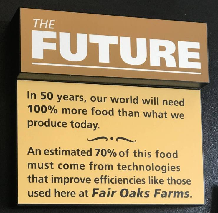 Visiting Fair Oaks Farms Indiana Lessons Learned-Kids Are A Trip