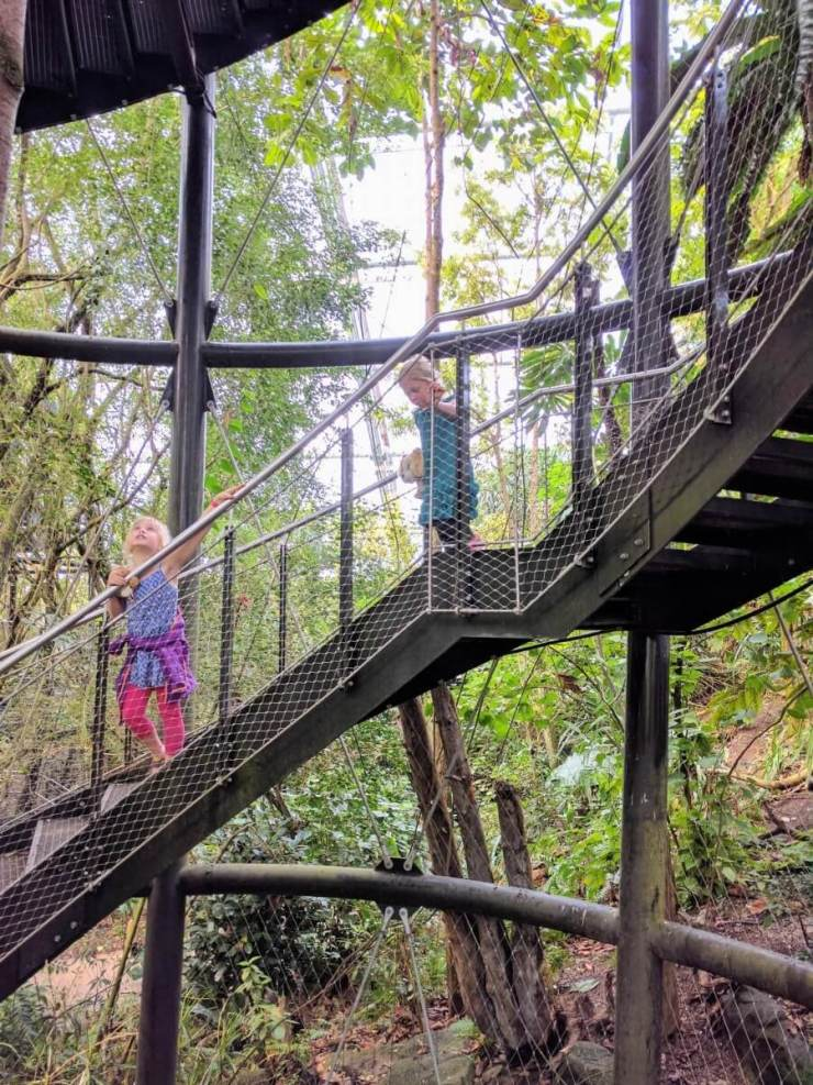 Family Friendly Things to Do in Zurich Zoo-Kids Are A Trip