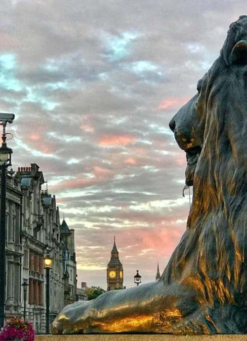 When traveling as a family in London, it can be difficult to find a place that is convenient, spacious, and family friendly. We've asked fellow family travel writers for their favorite spots and come up with the best London family hotels to help you book your trip.-Kids Are A Trip