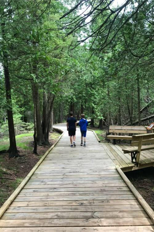 Things-to-Do-in-Door-County-with-Kids-Ridges-Sanctuary-Hike-Kids-Are-A-Trip