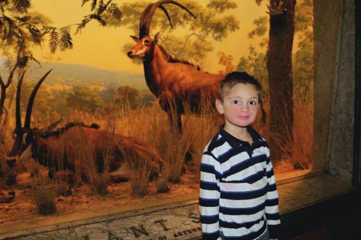American-Museum-of-Natural-History-fun things to do with kids in New York-Kids Are A Trip