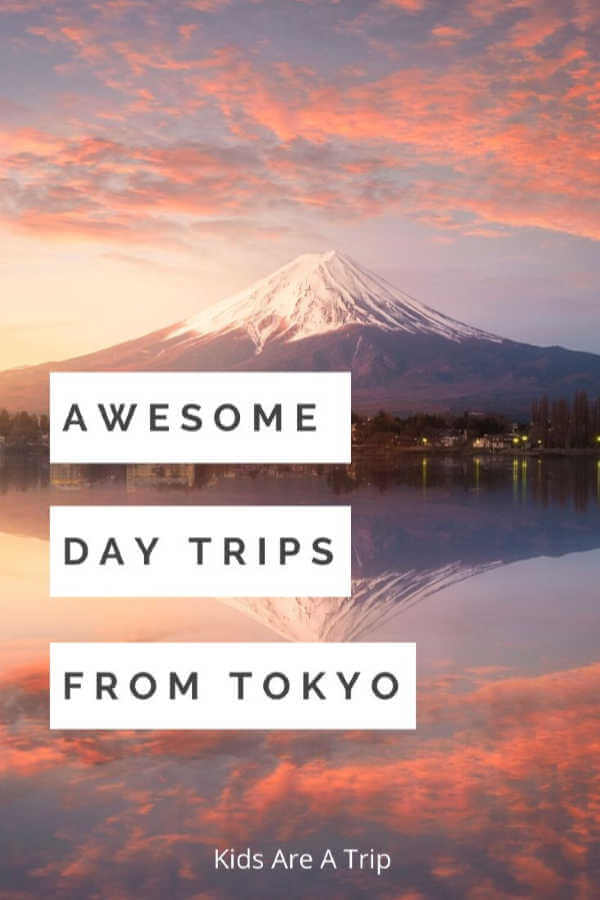 Mt Fuji Day Trip from Tokyo-Kids Are A Trip