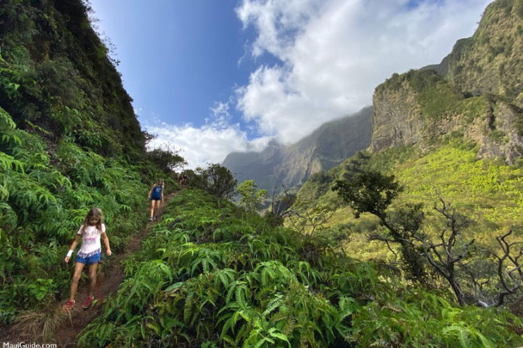 Best Things to Do in Maui with Kids