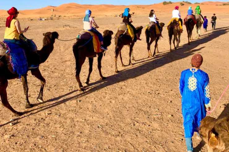 Morocco group tour camel ride Sahara