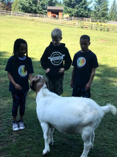Kids and Kids at Second Chance Ranch