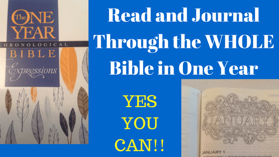 Read and Journal Through the Bible in One Year-REALLY!
