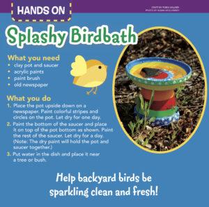 Splashy Birdbath
