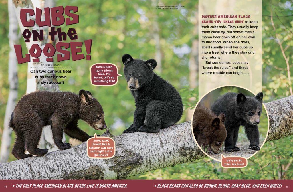 Cubs Ranger Rick May 2017 1