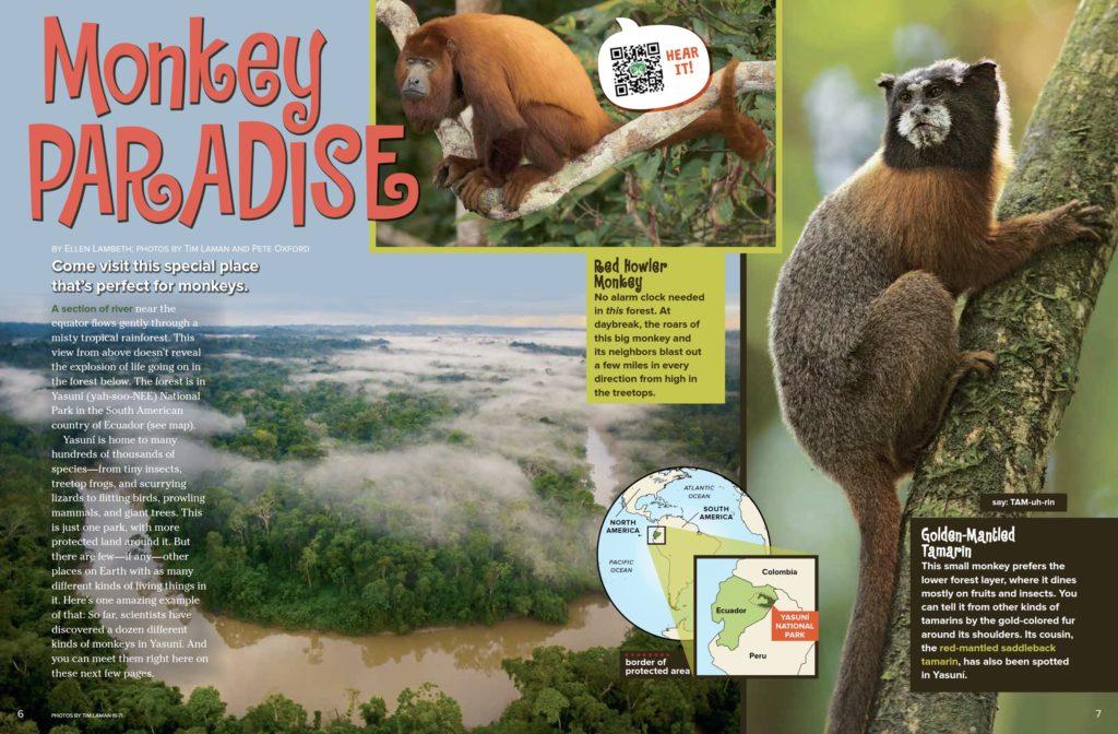 Monkey Paradise Ranger Rick March 2017 1