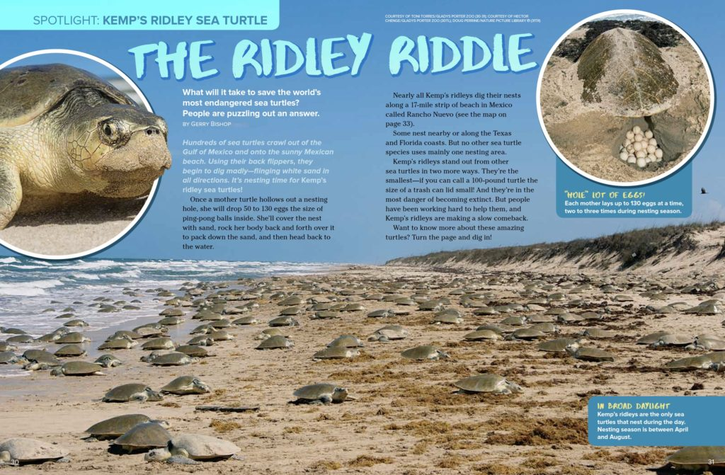 Ridley Riddle Ranger Rick March 2017 1