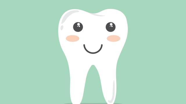 歯の黄ばみの対策
