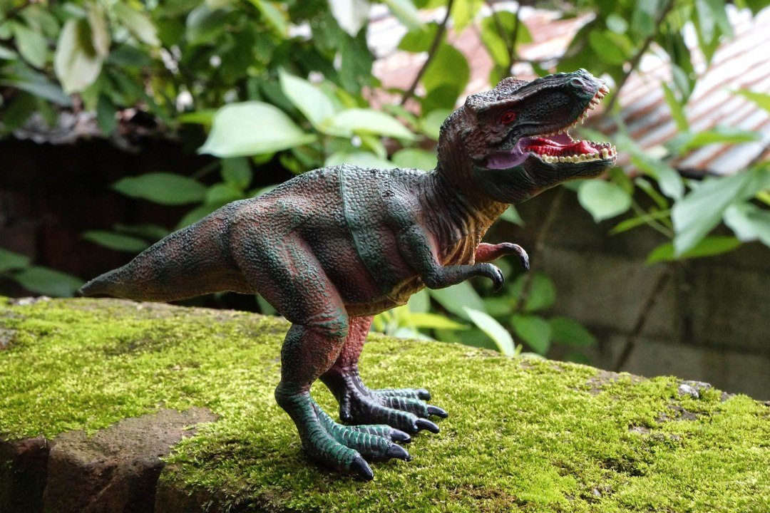 kinderfeestje, kinderpartijtje, dinofeest, dinosaurus