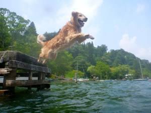 Bjorn_Leaps_Off_Dock