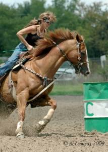 barrel-racer