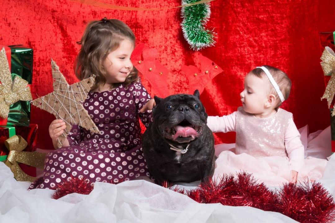 kidsfoto.es Sesión fotográfica Navidad, fotografía infantil en Navidad, postales y calendarios