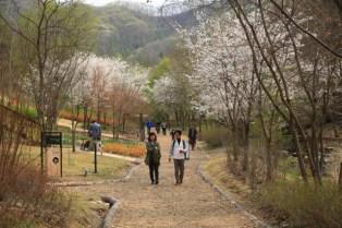 Jade Garden Korea Walk