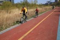 Bikes lane Yeouido Saetgang Ecological Park