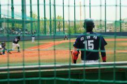 Baseball Mondrian Garden West Seoul Lake Park 서서울 호수공원