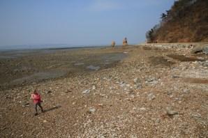 Daebudo Island, Ansan
