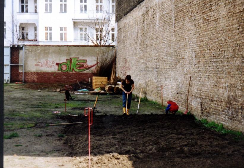 Anpflanzung_2