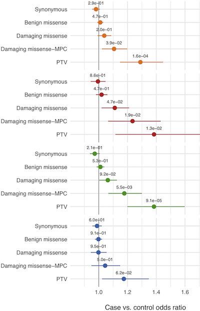 epilepsy rare variant burden
