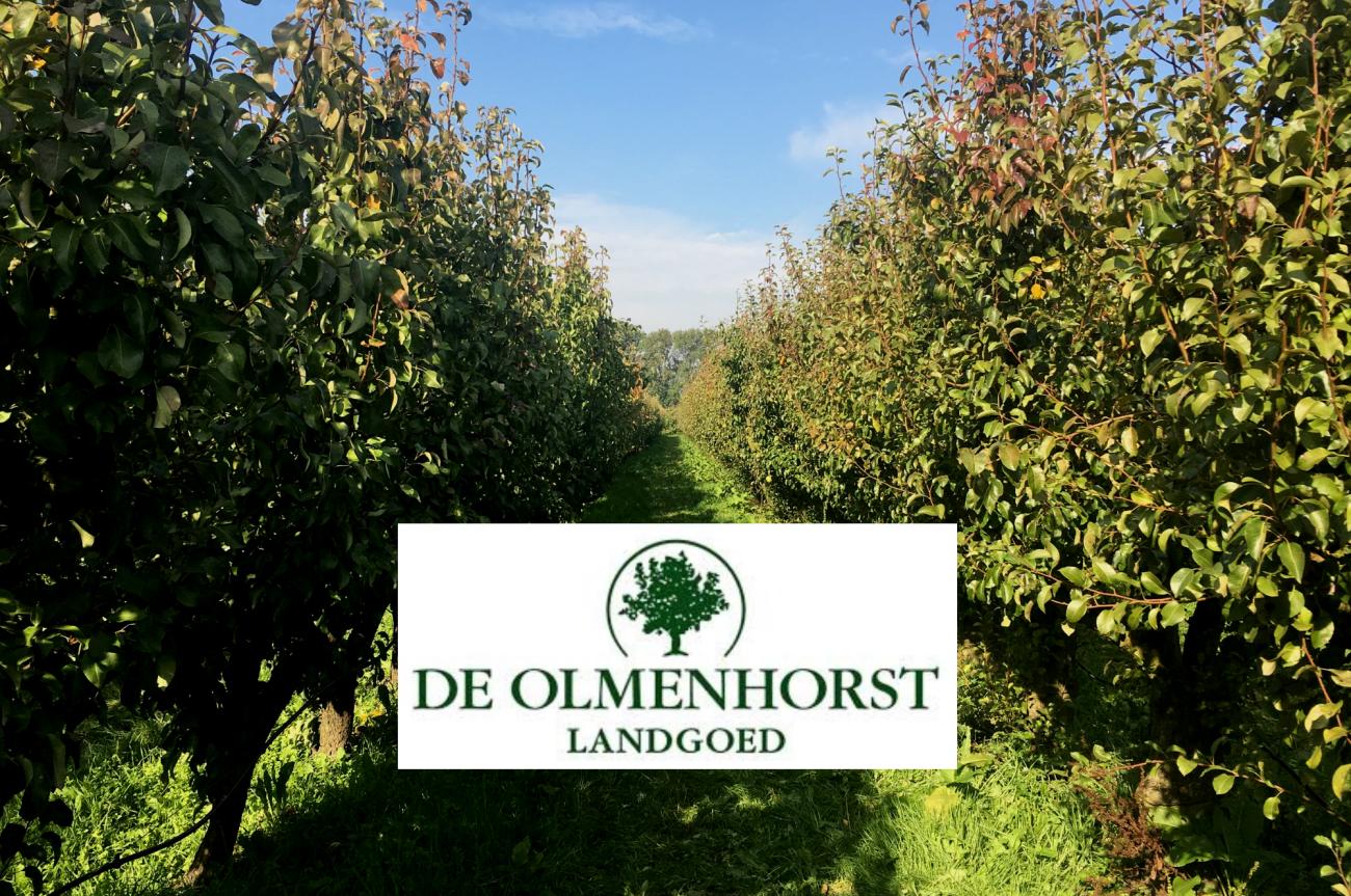 Appels & Peren Plukken bij de Olmenhorst | Babies Kitchen
