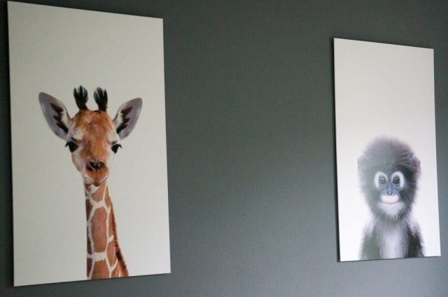 Jungle Babykamer: Dieren prints | Babies Kitchen