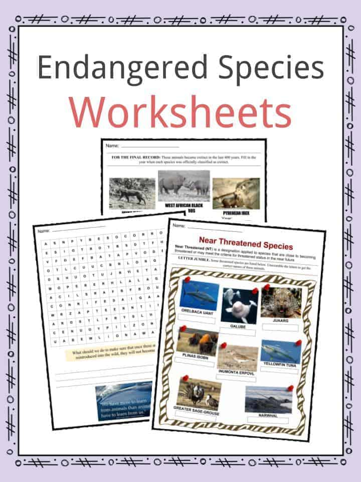 Endangered Species Facts  Worksheets  Categories  U0026 Types