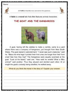 Kangaroo Facts Worksheets Habitat Species Ampt For Kids