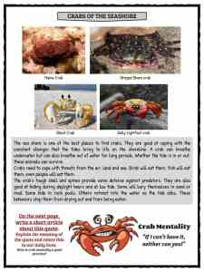 Crab Facts and Worksheets For Kids