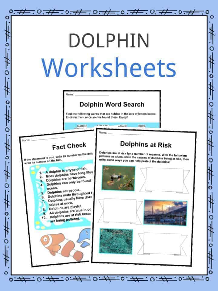 Dolphin Facts, Worksheets, Species & Habitat For Kids