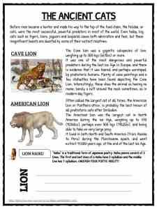 Lion Facts, Worksheets & Information for Kids