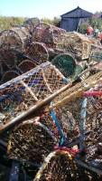 Image of pile of multi-coloured lobster pots in front of shed
