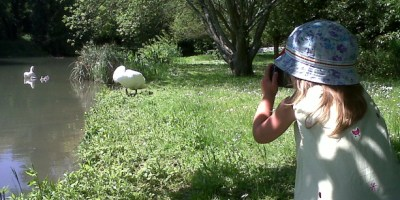 Image Of Toddler In Sun Hat And Sun Dress On Grassy Bank Taking Photos OF Swans And Cygnets On River Bank And In Water