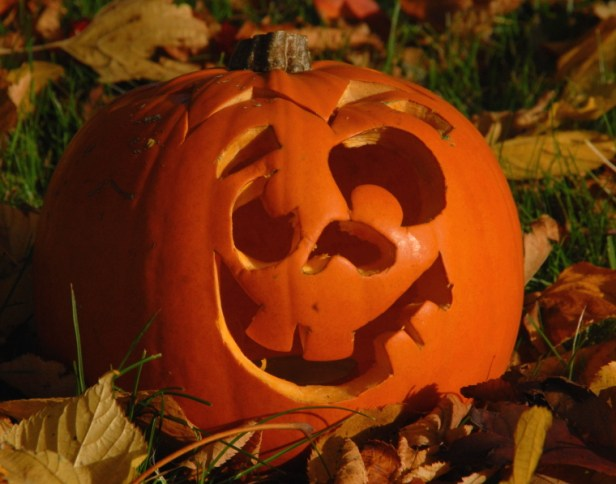carved-pumpkin-in-autumn-leaves