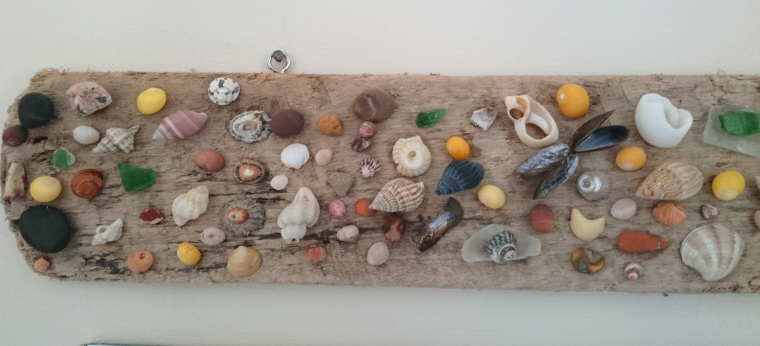 Image of driftwood-decorated-with-shells-and-sea-glass-on-wall