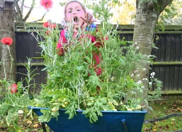 girl-hiding-behind-tall-wildflower-plants-planted-in-wheelbarrow