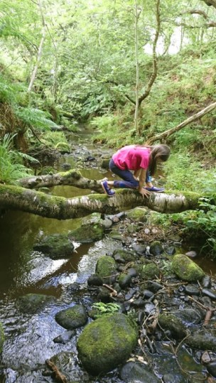 Image of girl in pink top and blue leggings balancing on log tree trunk over stream creek river