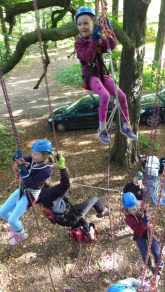 Image of children-on-climbing-ropes