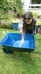Image of girl-painting-blue-wheelbarrow-in-garden