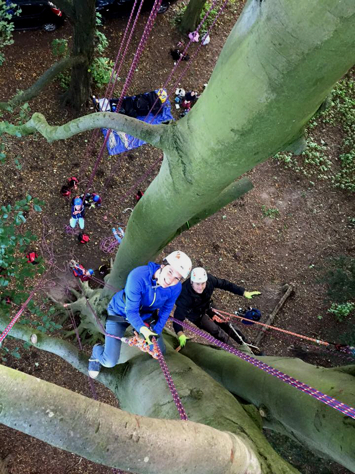 Image of man-and-woman-climbing-tree-viewed-from-above