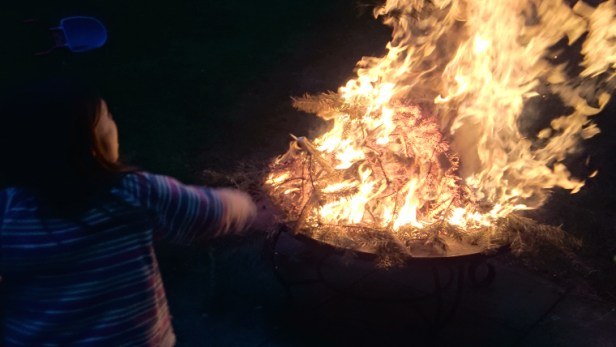 girl-in-front-of-flaming-fire-at-night