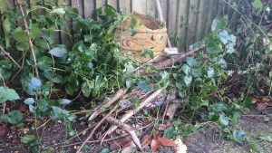 Image of pile of leaves and sticks by fence with broken plant pot