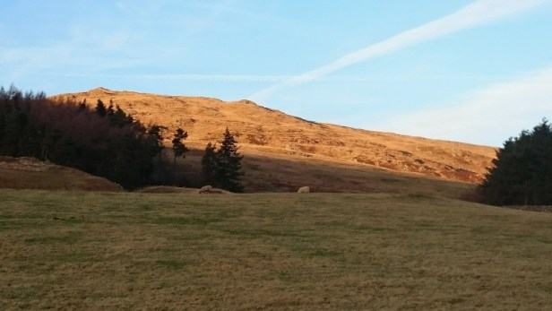field-in-shadow-with-distant-hill-in-sunlight
