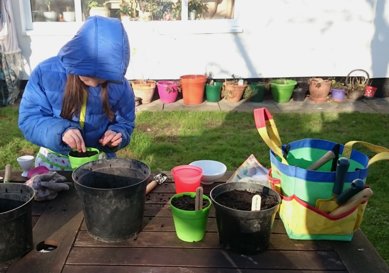 Image of girl-in-blue-coat-potting-seeds-on-table-in-garden
