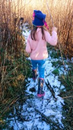 Image of girl-in-pink-jumper-blue-leggings-and-woolly-hat-walking-through-reeds-with-snow-on-ground