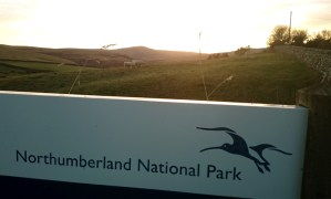 Image of northumberland-national-park-sign-with-sheep-in-field-behind-at-sunset