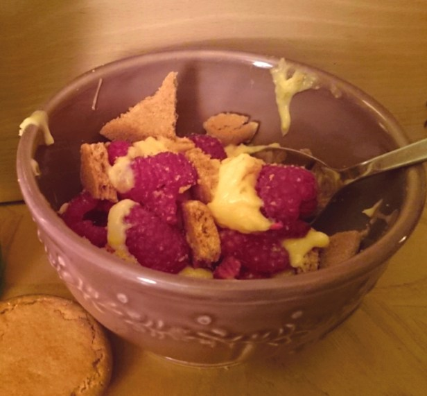 bowl-of-custard-raspberries-and-ginger-biscuits-with-spoon