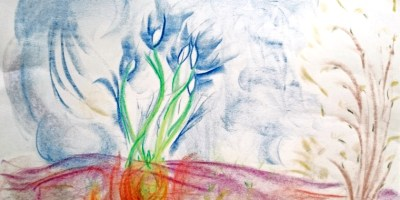 Image of crayon-drawing-of-snowdrop-bulbs-and-buds-of-trees
