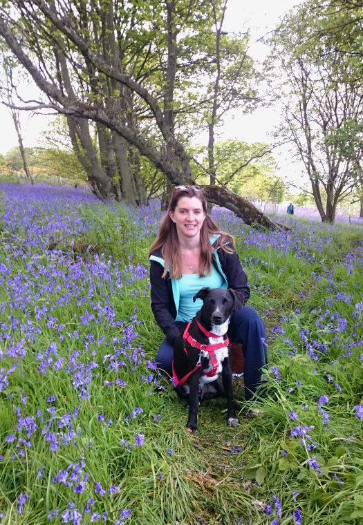 Woman and dog sitting in bluebell wood